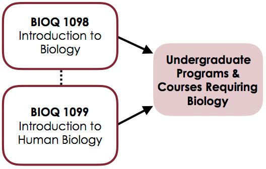 Biology Qualifying