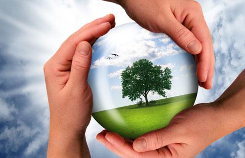 sustainability pic