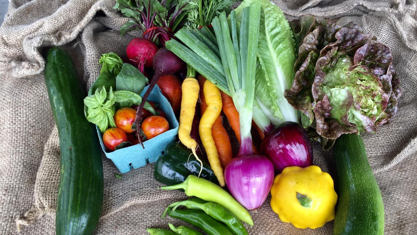 KPU Farm Schools CSA Produce Box