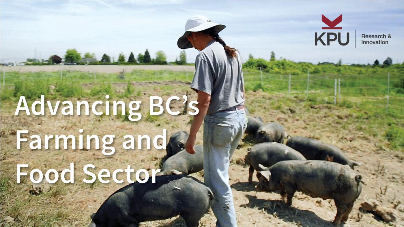 Hogs vs Machine- Advancing BC's Farming and Food Sector, KPU Institute for Sustainable Food Systems