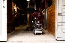 Kwantlen Polytechnic University has launched its newly redesigned farrier program.