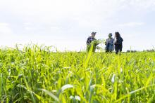 To tackle the growing concern about food security and food systems, Kwantlen Polytechnic University (KPU) is launching the Graduate Certificate in Sustainable Food Systems and Security (SFSS).